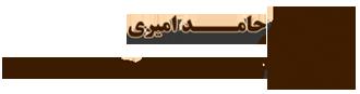 حامد امیری - بهترین وکیل در اصفهان